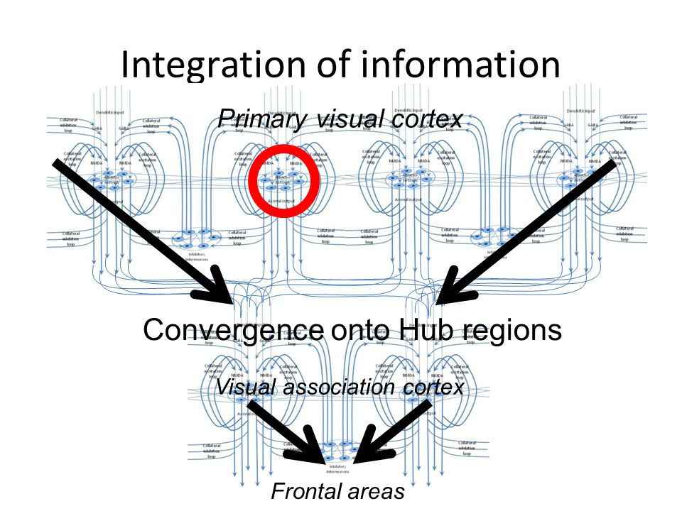 Integration of information