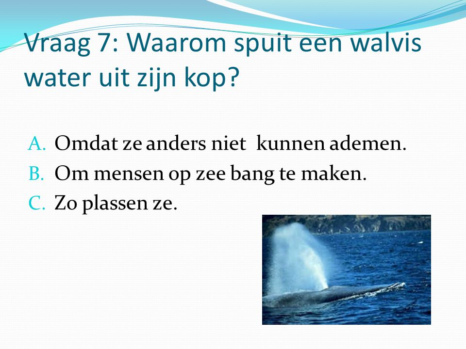 Vraag 7: Waarom spuit een walvis water uit zijn kop