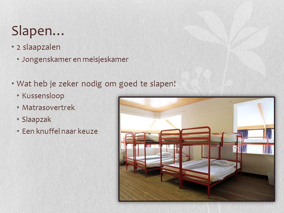 Slapen… 2 slaapzalen Wat heb je zeker nodig om goed te slapen!