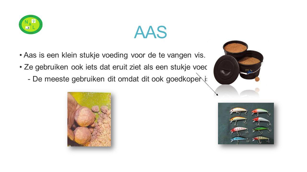 AAS Aas is een klein stukje voeding voor de te vangen vis.