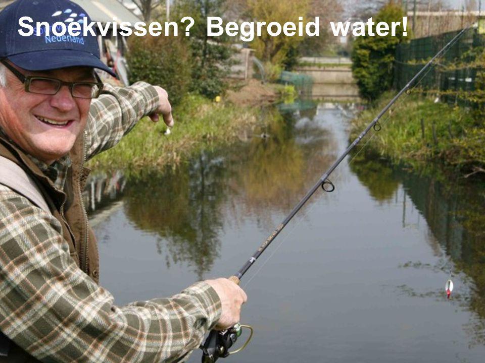Snoekvissen Begroeid water!