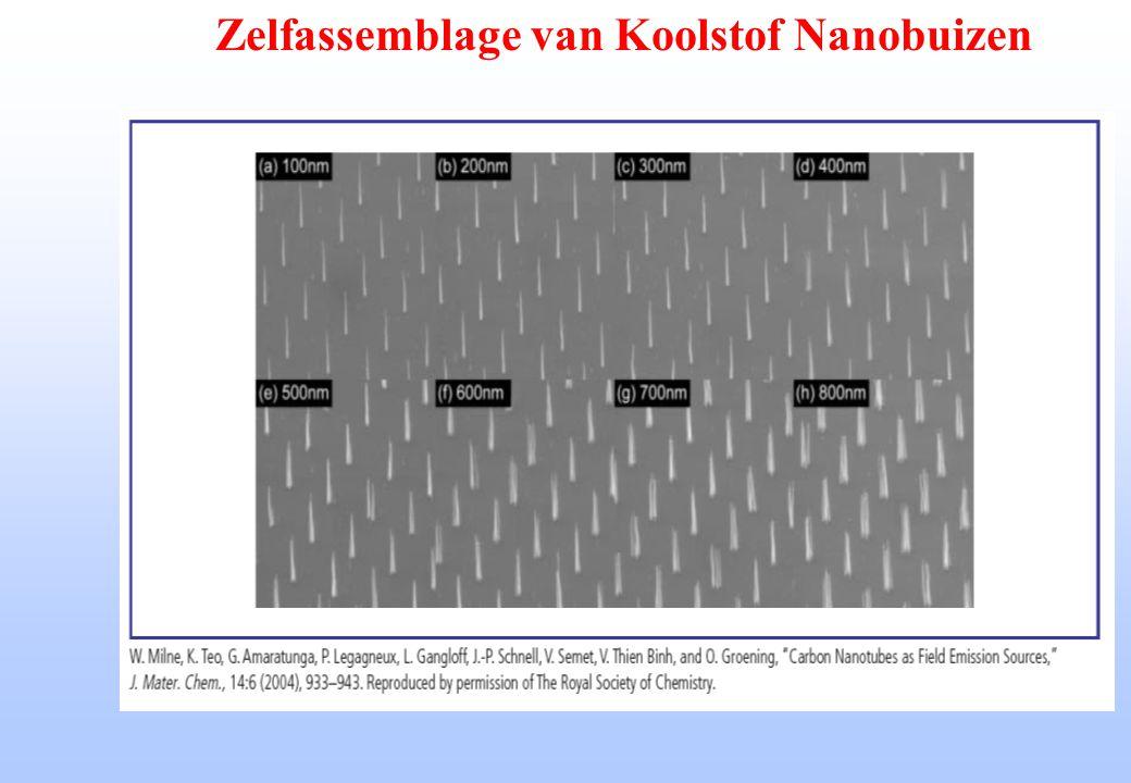 Zelfassemblage van Koolstof Nanobuizen