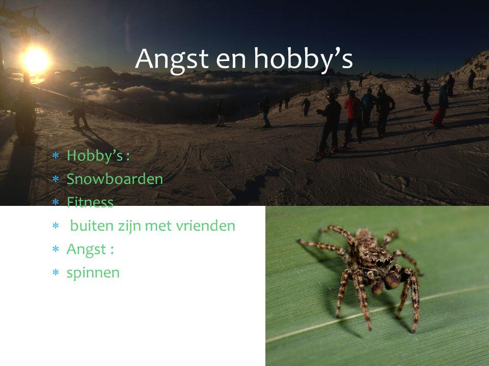 Angst en hobby's Hobby's : Snowboarden Fitness