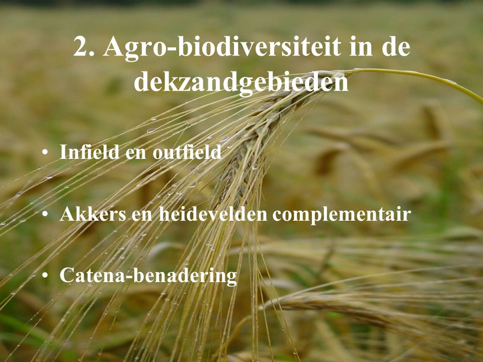 2. Agro-biodiversiteit in de dekzandgebieden