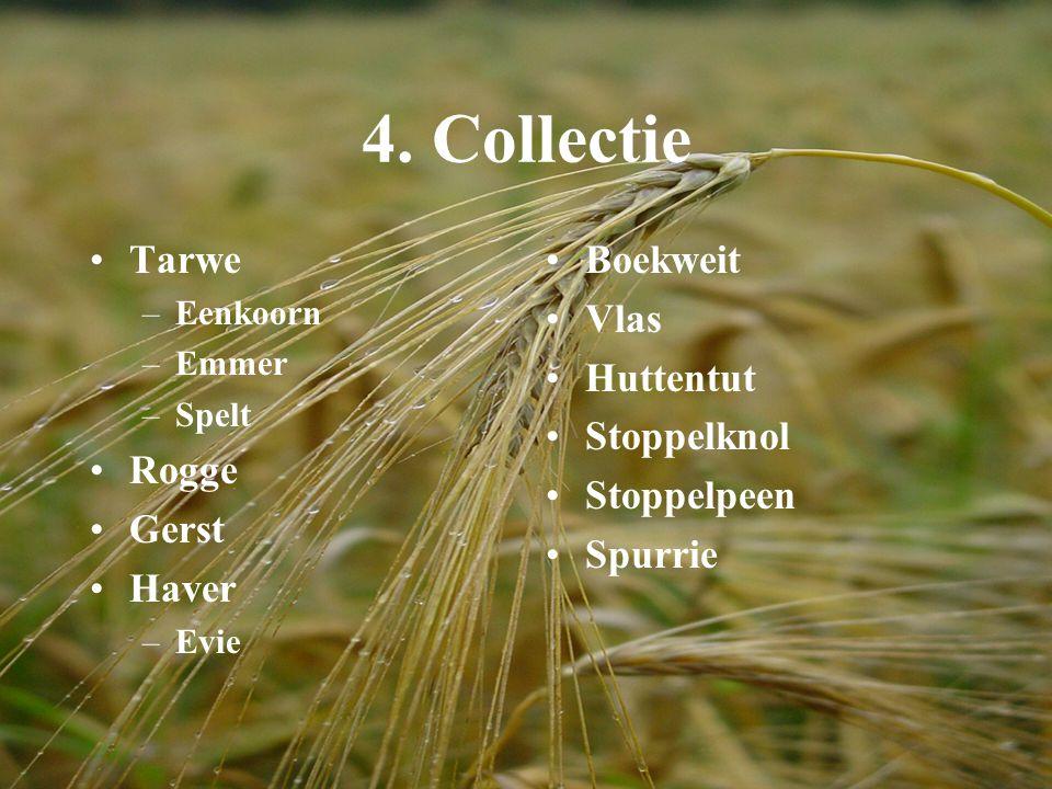 4. Collectie Tarwe Rogge Gerst Haver Boekweit Vlas Huttentut