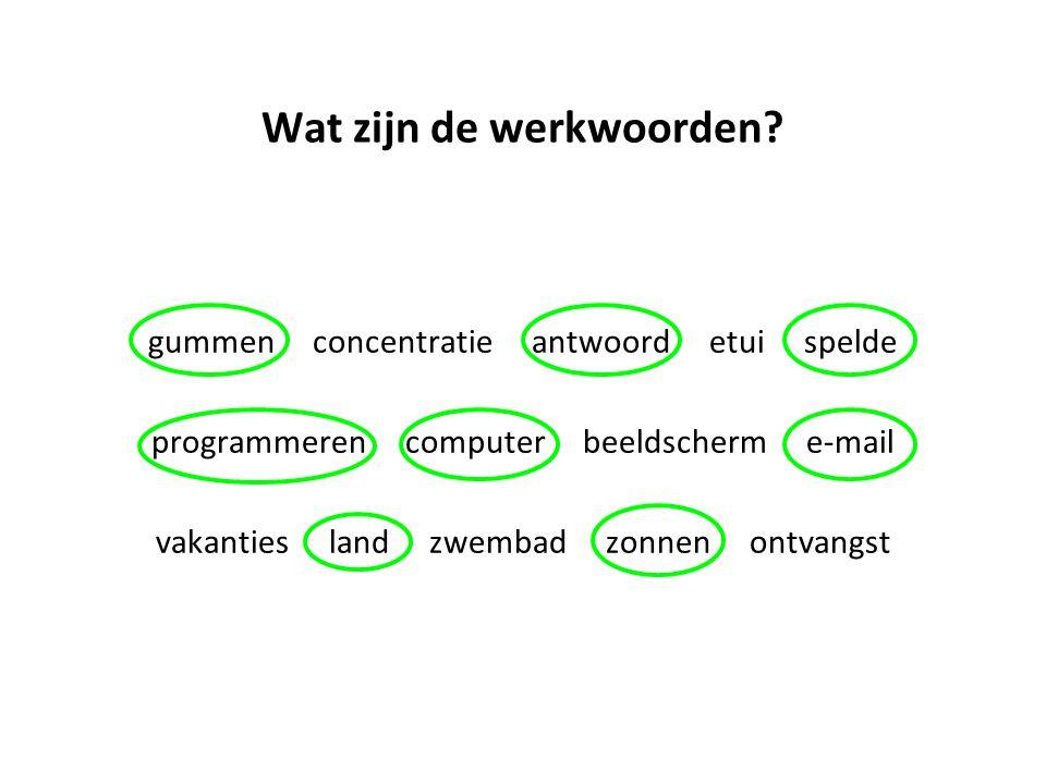 Wat zijn de werkwoorden