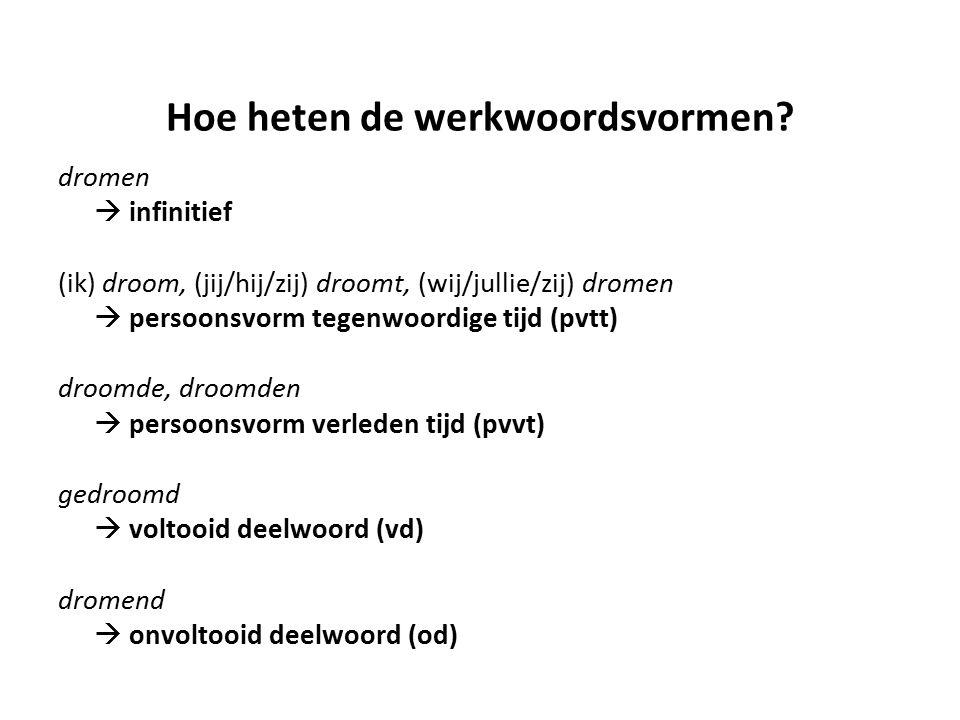 Hoe heten de werkwoordsvormen