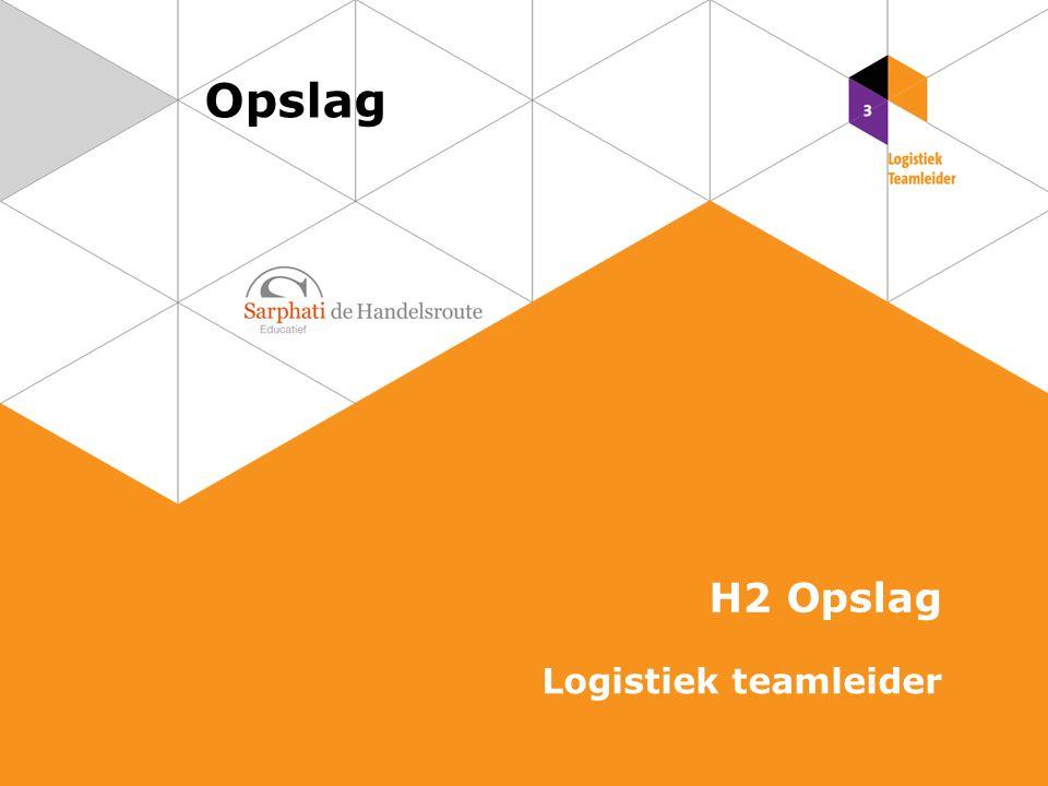 Opslag H2 Opslag Logistiek teamleider