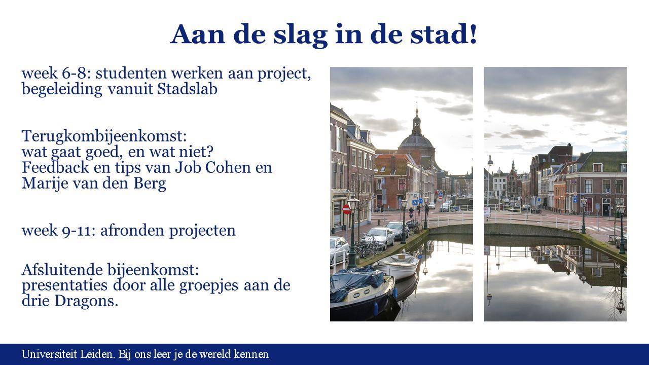 Aan de slag in de stad! week 6-8: studenten werken aan project, begeleiding vanuit Stadslab.