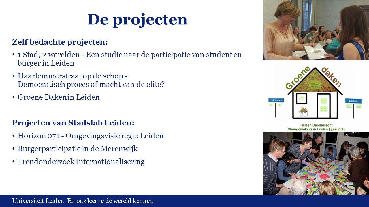 De projecten Zelf bedachte projecten: