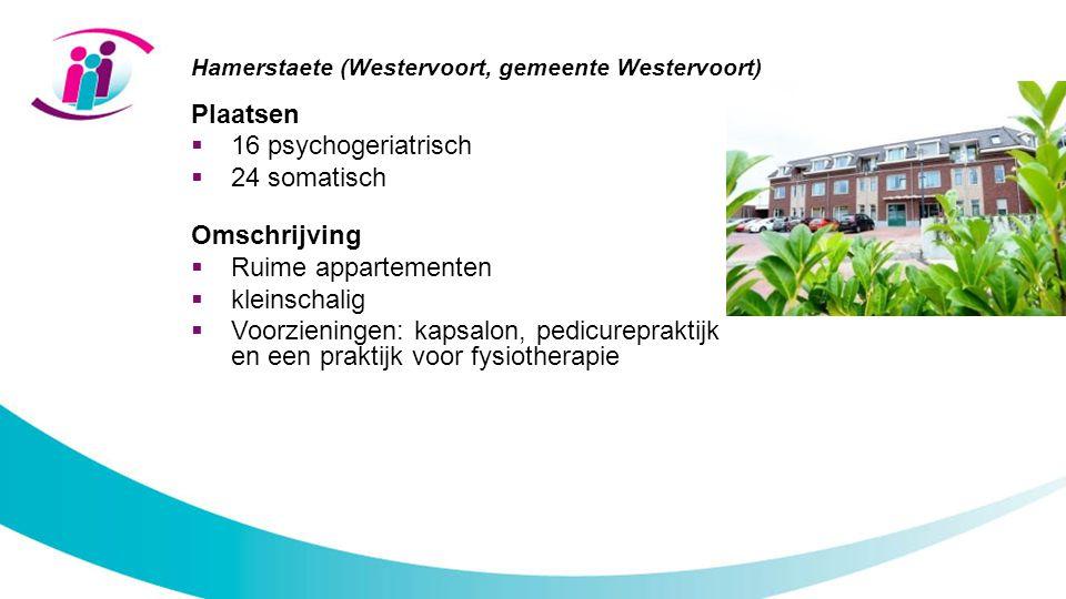 Hamerstaete (Westervoort, gemeente Westervoort)