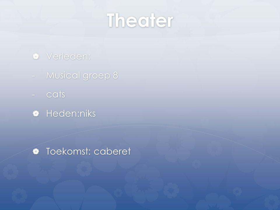 Theater Verleden: Musical groep 8 cats Heden:niks Toekomst: caberet
