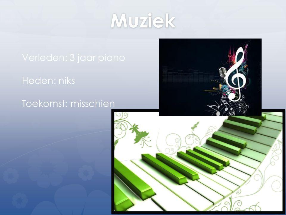 Muziek Verleden: 3 jaar piano Heden: niks Toekomst: misschien