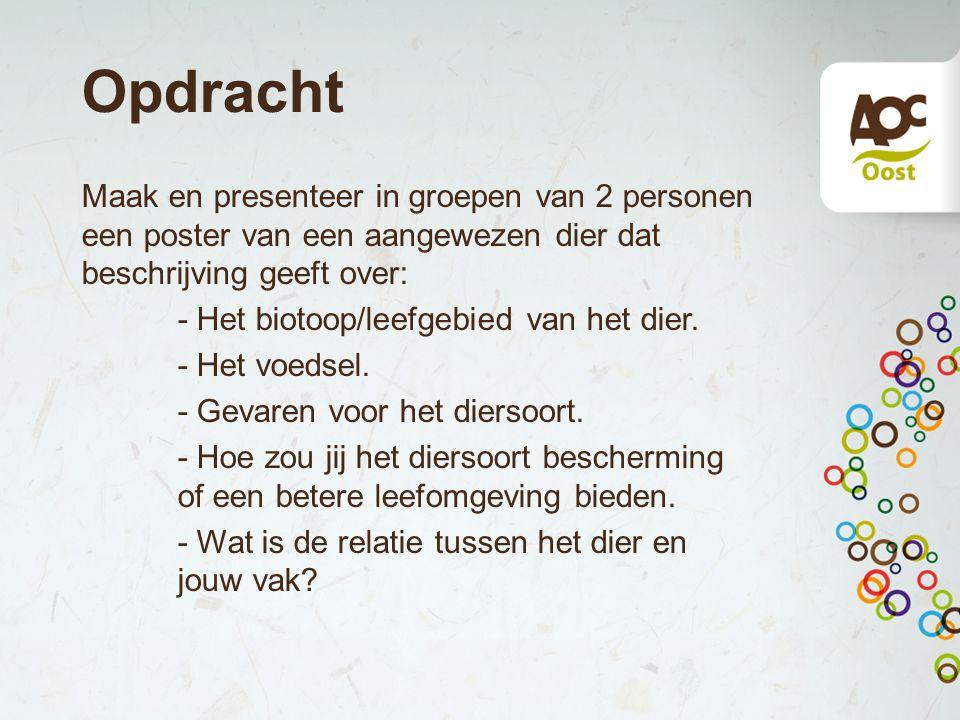 Opdracht Maak en presenteer in groepen van 2 personen een poster van een aangewezen dier dat beschrijving geeft over: