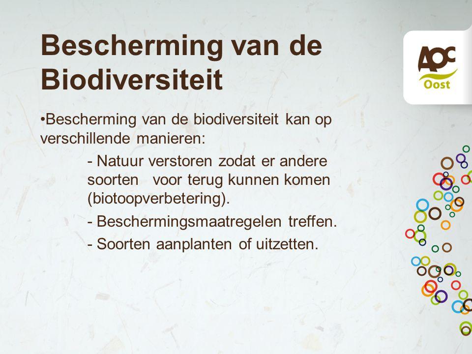 Bescherming van de Biodiversiteit