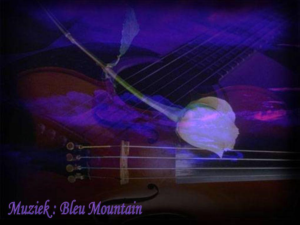 Muziek : Bleu Mountain