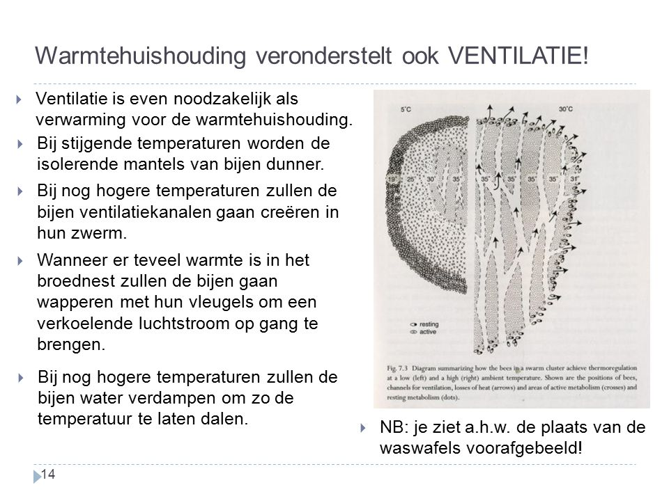 Warmtehuishouding veronderstelt ook VENTILATIE!