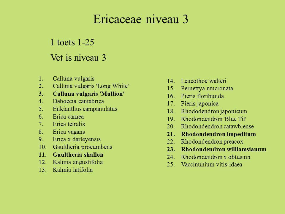 Ericaceae niveau 3 1 toets 1-25 Vet is niveau 3 Calluna vulgaris