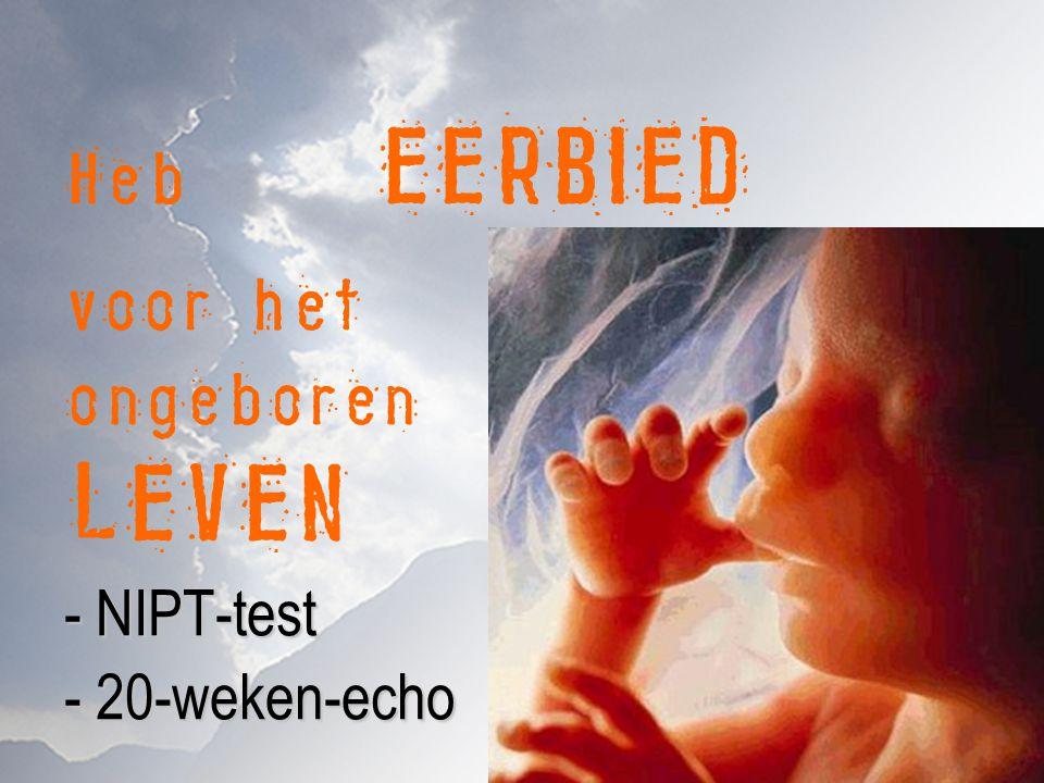 Heb EERBIED voor het ongeboren LEVEN - NIPT-test - 20-weken-echo