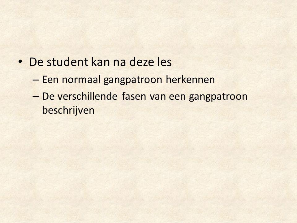 De student kan na deze les
