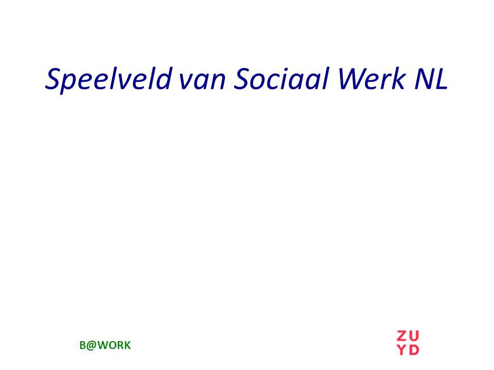 Speelveld van Sociaal Werk NL