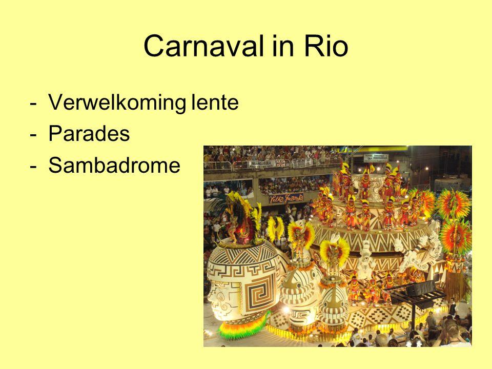 Carnaval in Rio Verwelkoming lente Parades Sambadrome