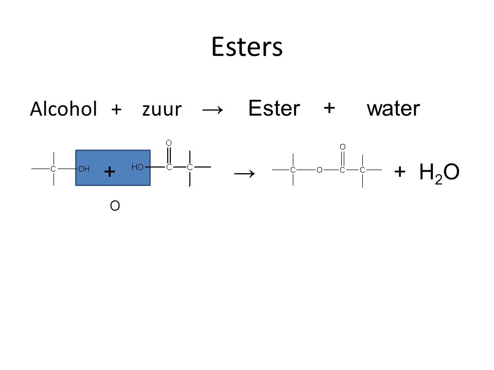 Esters Alcohol + zuur → Ester + water + → + H2O O