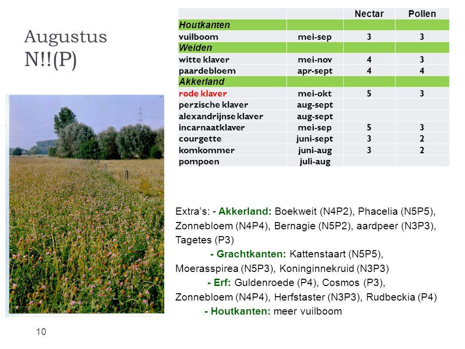 Nectar Pollen. Houtkanten. vuilboom. mei-sep. 3. Weiden. witte klaver. mei-nov. 4. paardebloem.