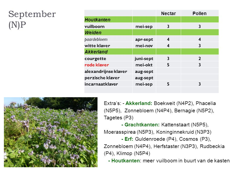September (N)P Nectar. Pollen. Houtkanten. vuilboom. mei-sep. 3. Weiden. paardebloem. apr-sept.