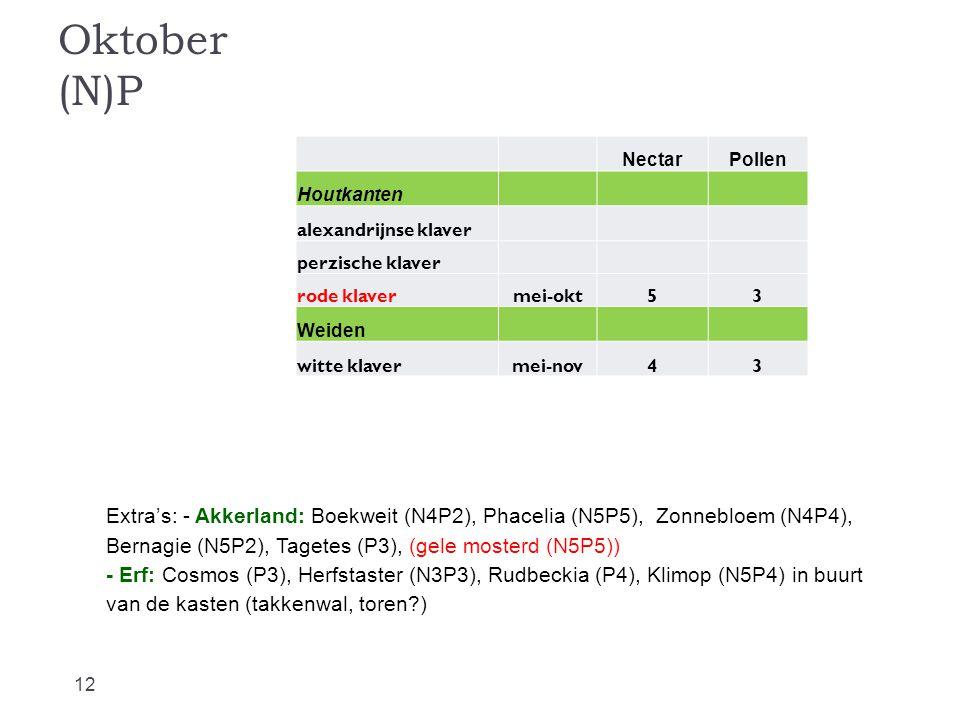 Oktober (N)P Nectar. Pollen. Houtkanten. alexandrijnse klaver. perzische klaver. rode klaver.