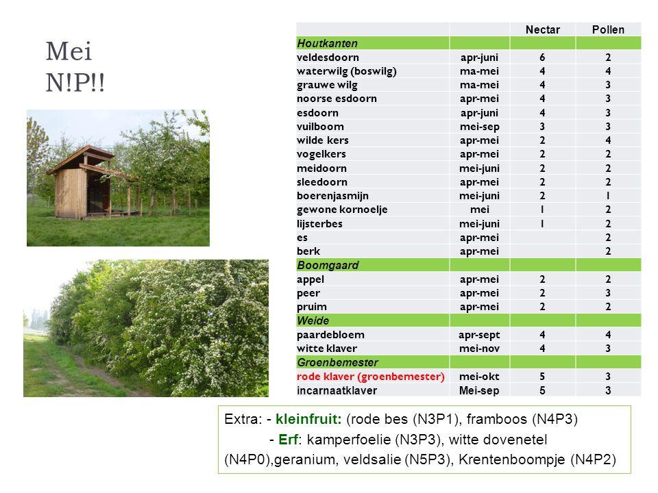 Mei N!P!! Extra: - kleinfruit: (rode bes (N3P1), framboos (N4P3)