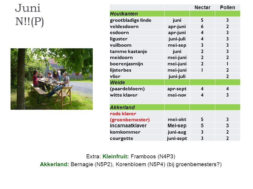 Juni N!!(P) Extra: Kleinfruit: Framboos (N4P3)