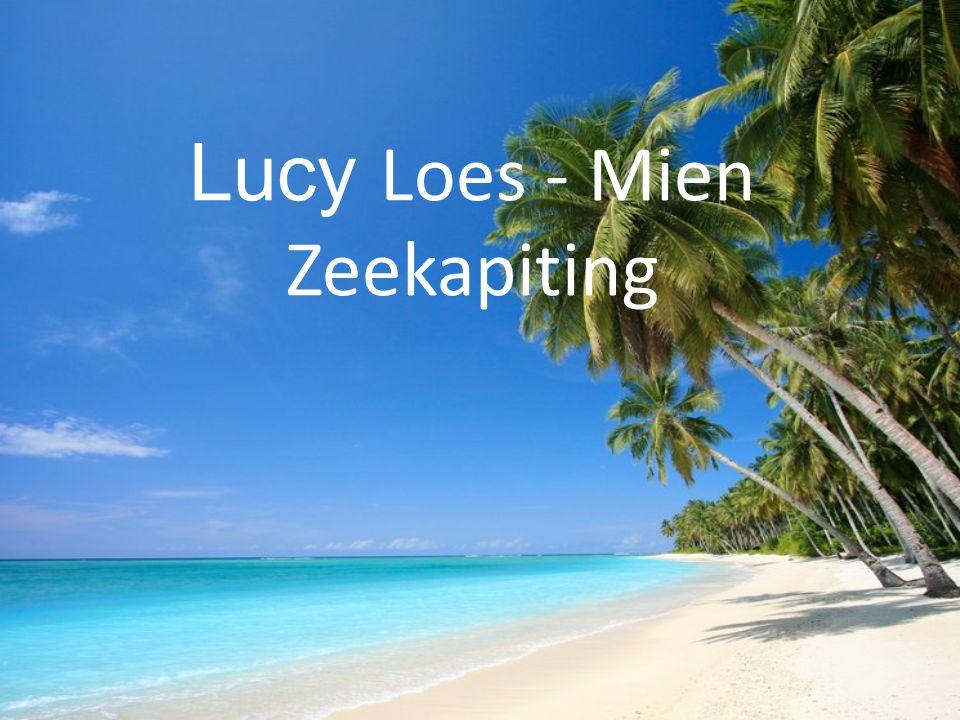 Lucy Loes - Mien Zeekapiting