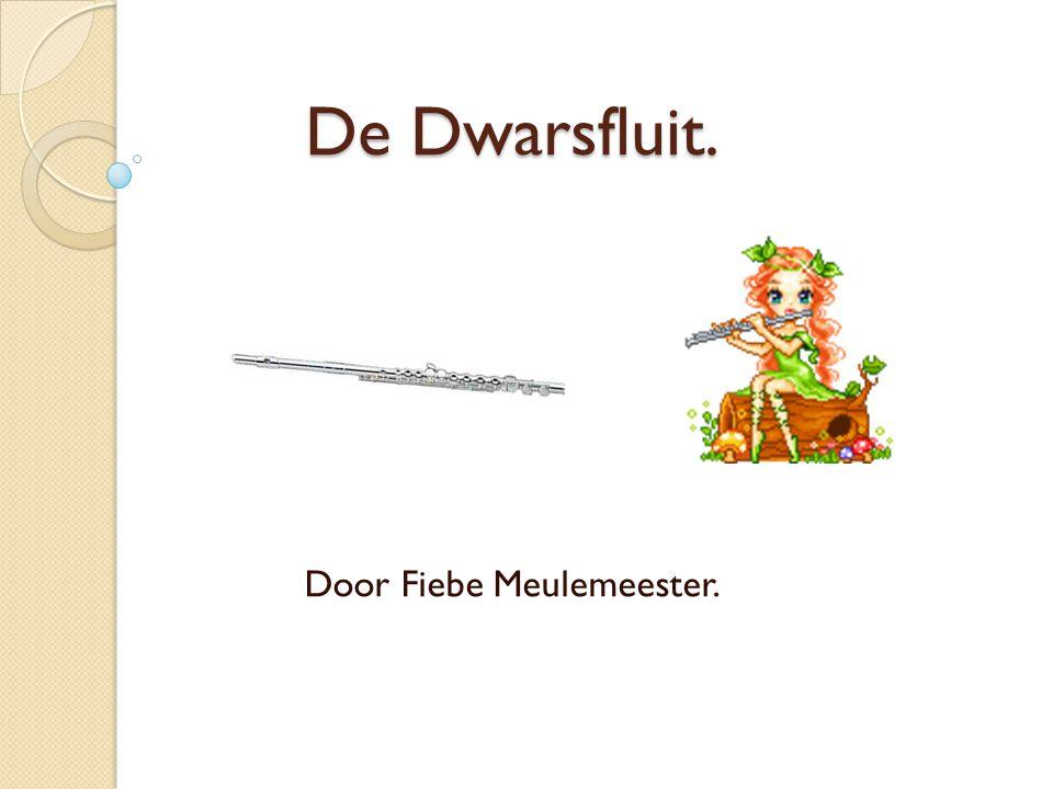 Door Fiebe Meulemeester.