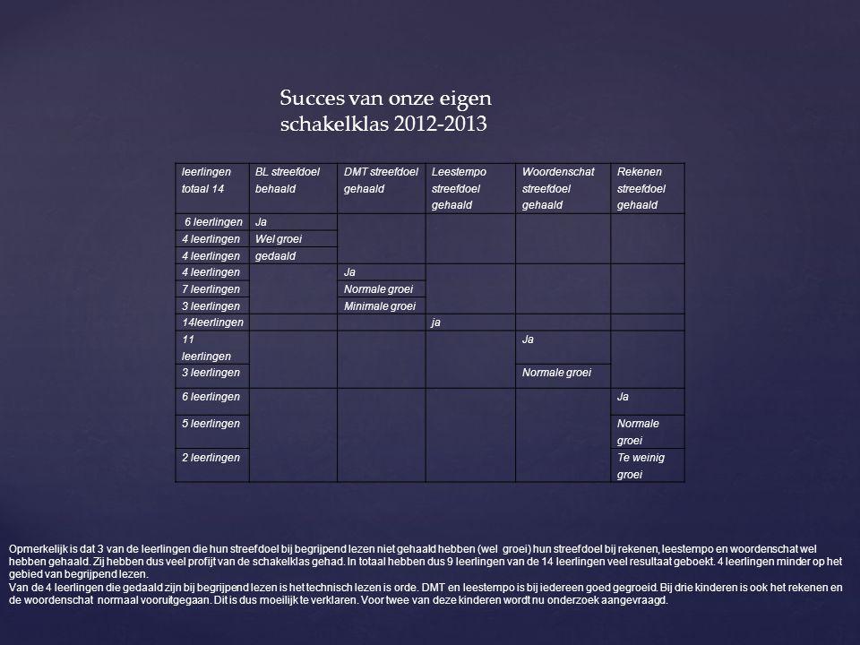 Succes van onze eigen schakelklas 2012-2013