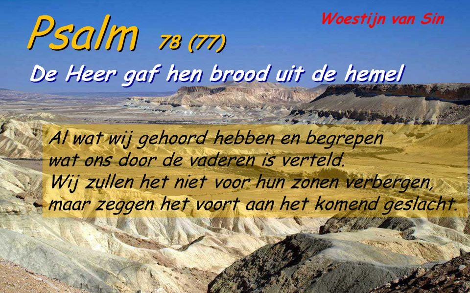 Psalm 78 (77) De Heer gaf hen brood uit de hemel