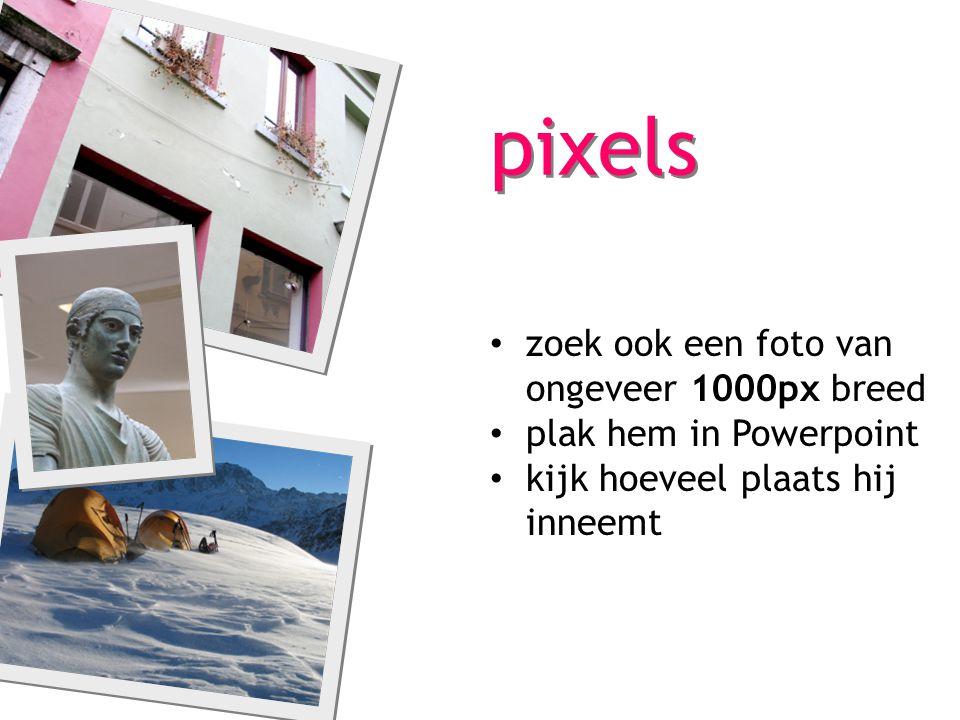 pixels zoek ook een foto van ongeveer 1000px breed