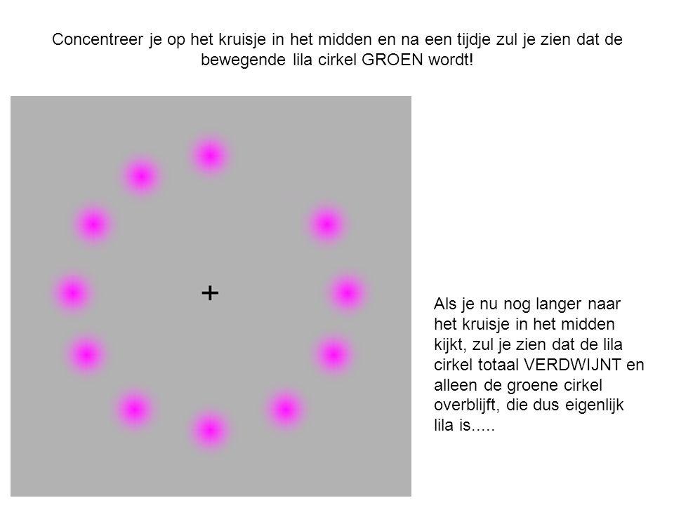 Concentreer je op het kruisje in het midden en na een tijdje zul je zien dat de bewegende lila cirkel GROEN wordt!