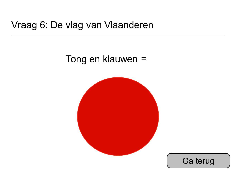 Vraag 6: De vlag van Vlaanderen