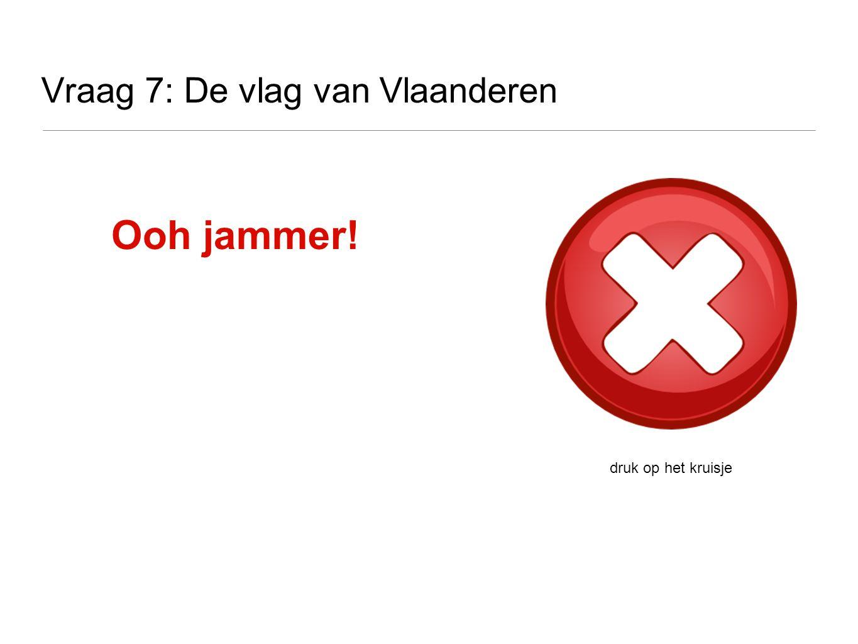 Vraag 7: De vlag van Vlaanderen