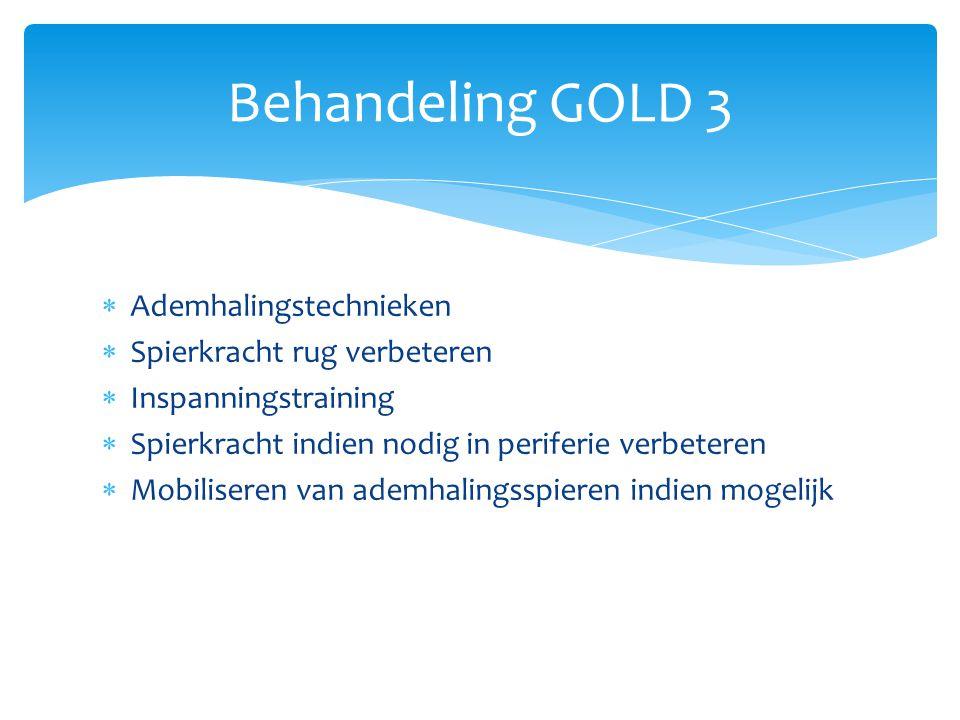 Behandeling GOLD 3 Ademhalingstechnieken Spierkracht rug verbeteren