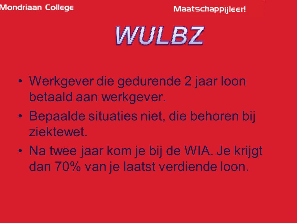 WULBZ Werkgever die gedurende 2 jaar loon betaald aan werkgever.