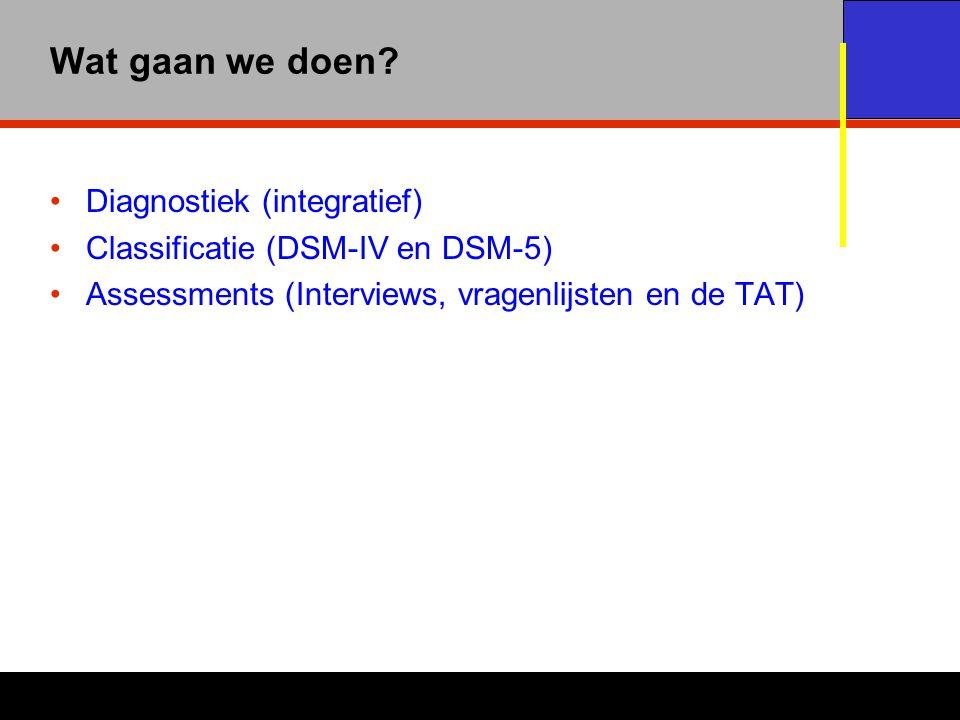 Wat gaan we doen Diagnostiek (integratief)