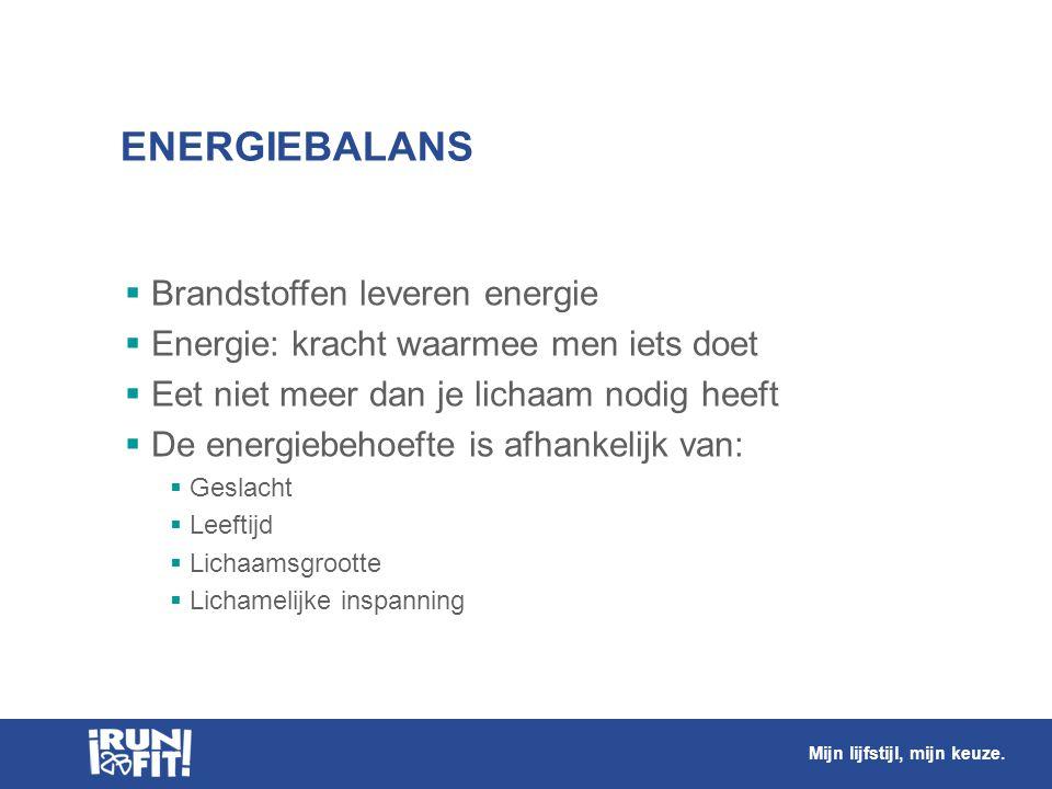ENERGIEBALANS Brandstoffen leveren energie