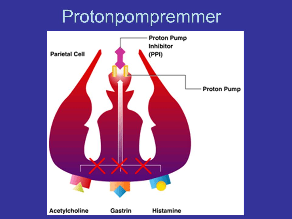 Protonpompremmer
