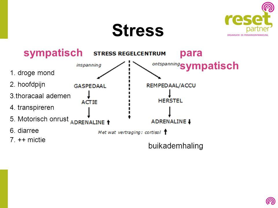 Stress sympatisch para sympatisch buikademhaling 1. droge mond
