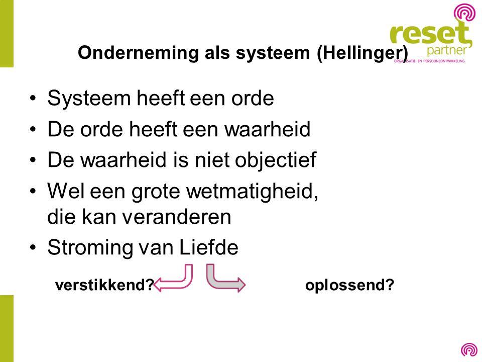Onderneming als systeem (Hellinger)
