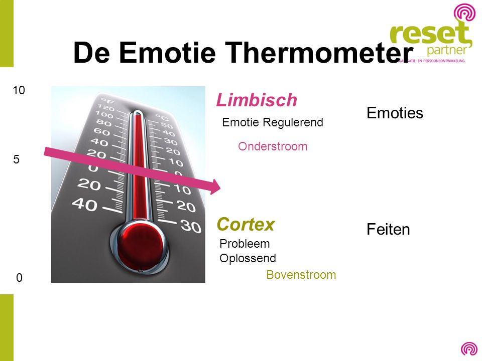 De Emotie Thermometer Limbisch Cortex Emoties Feiten 10