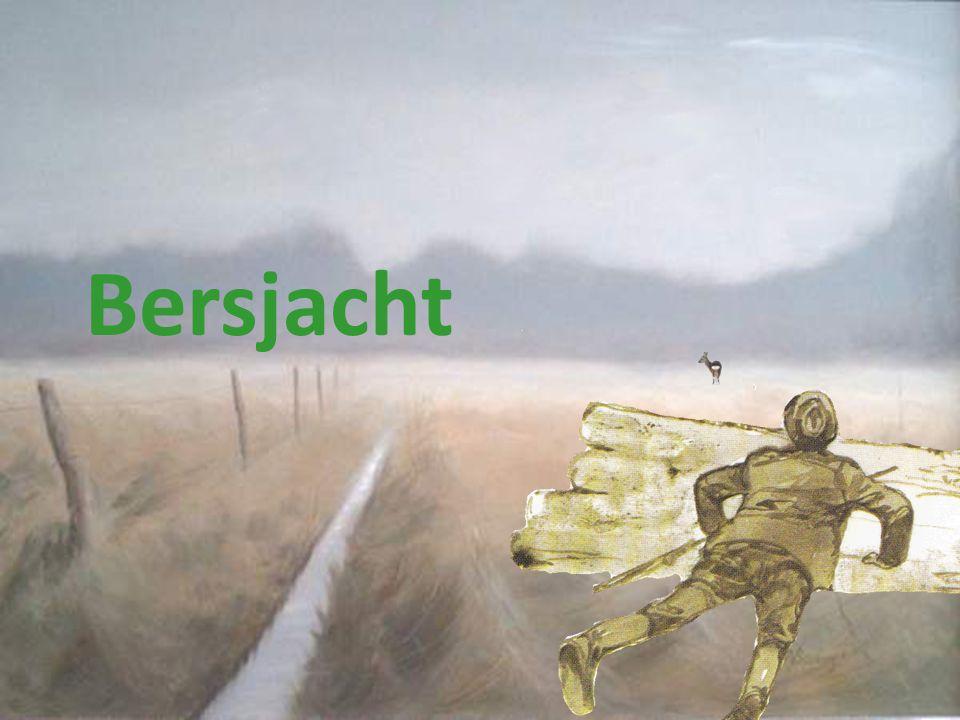 Bersjacht