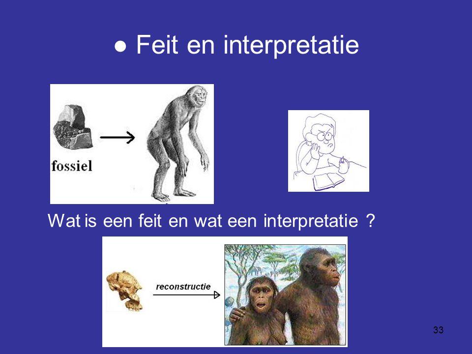 ● Feit en interpretatie
